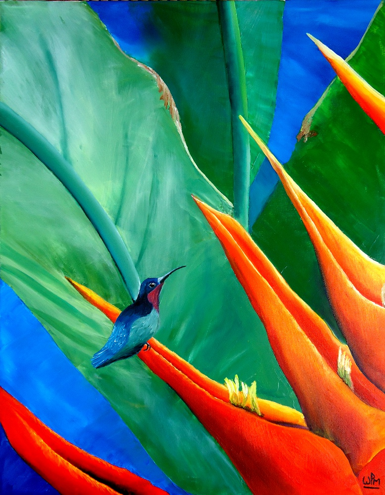 Purple throated carib by WendyMitchell