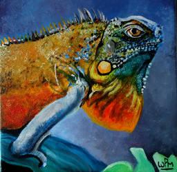 Iguana by WendyMitchell