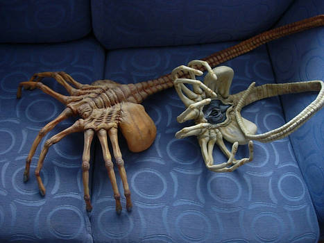 Facehuggers
