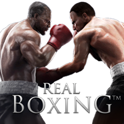 Real Boxing Dock Icon