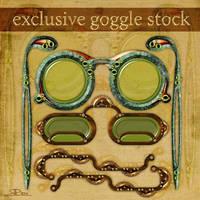 Exclusive Goggle Stock