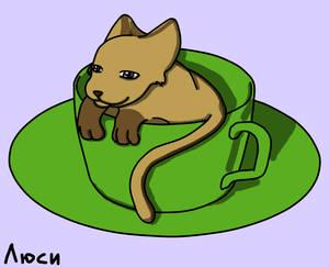 Cat in a cup (clones)