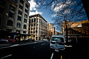 Auckland Street Life by MisterDedication