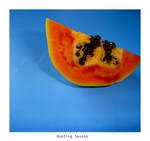 papaya by HuntingSeason