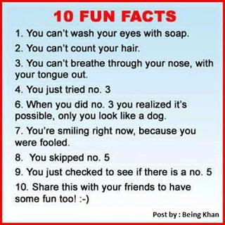 10 Fun Facts by FogandDreams