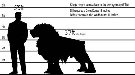Kriege Height Comparison by SmexyHajiSan