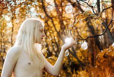 light bulbs by Ann-Rentgen