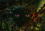 Eyes in the jungle