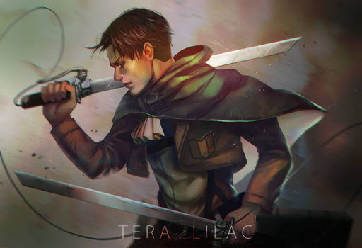 Levi by Teralilac