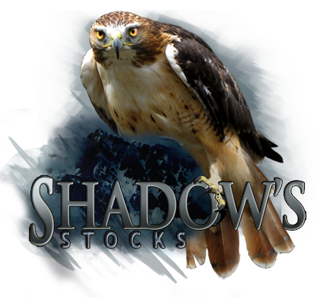 ShadowsStocks's Profile Picture