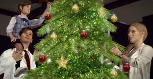 Birkin's Christmas