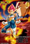 Poster Dragon Ball Super Broly Vegeta SSJ Dios L