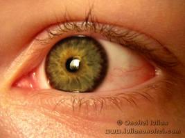 Eye 1 by Revolt666