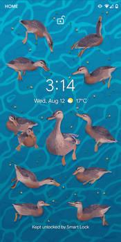Free Duckie Lock Screen (link in description)