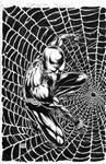 Spider-Man Black