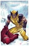 Wolverine vs. Ninjas