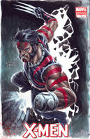 Wolverine - Age of Apocalypse by edtadeo