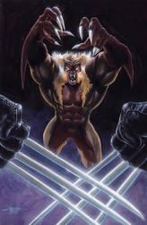 Sabertooth vs Wolverine
