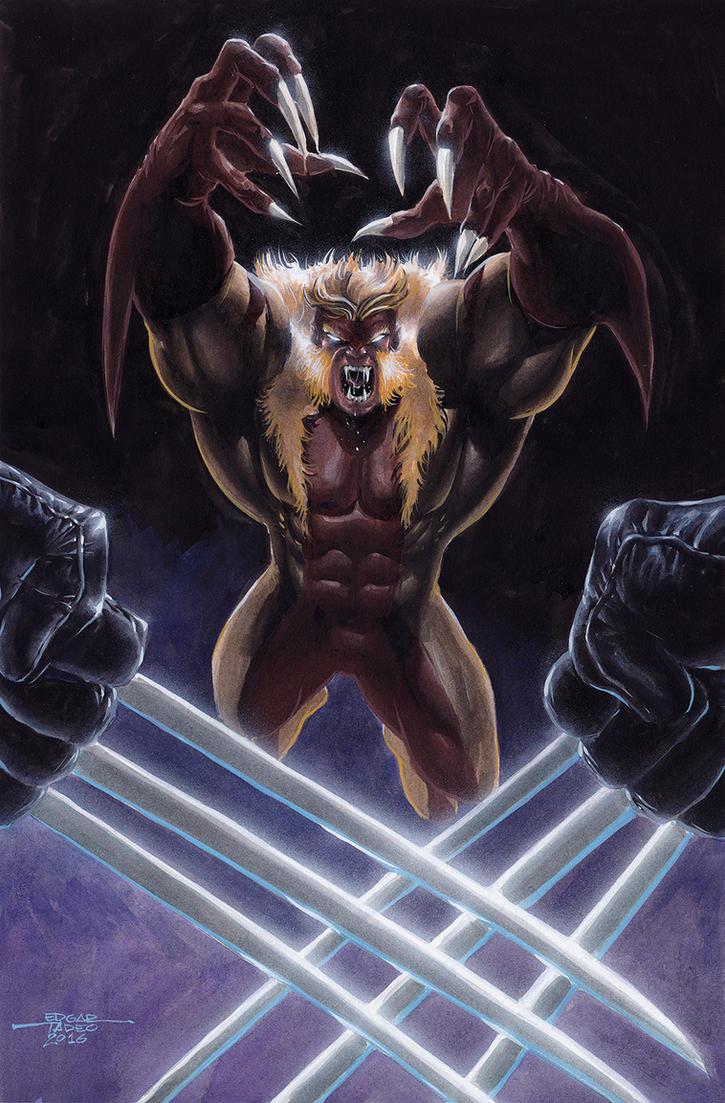 Sabertooth vs Wolverine by edtadeo
