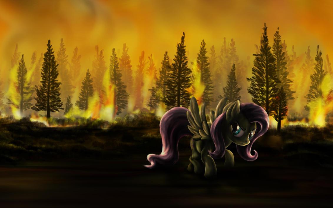 Arsonshy by DCPIP