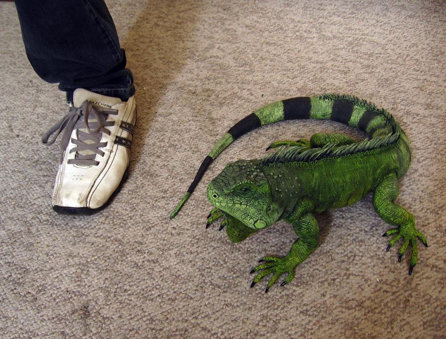 Iguana size by DannArte