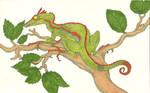 Lesser Tree Dragon