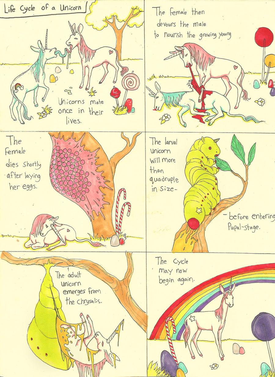 Life Cycle of a Unicorn by CindarellaPop on DeviantArt