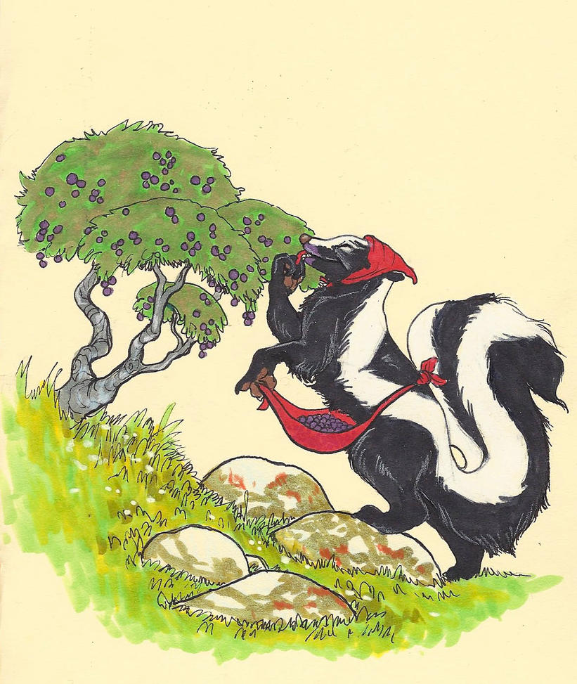 Skunk by CindarellaPop