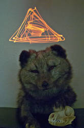 Illuminati by CindarellaPop