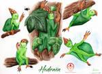 Various Hedraen