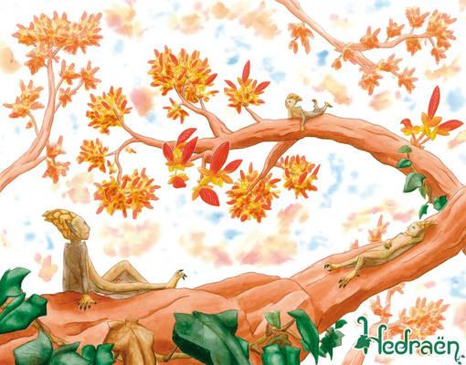 Hedraen preview - Autumn