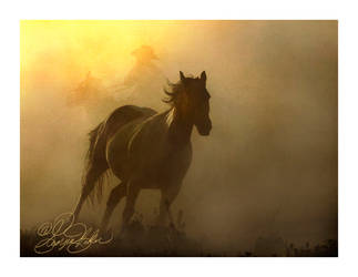 Breakaway by photocrafter