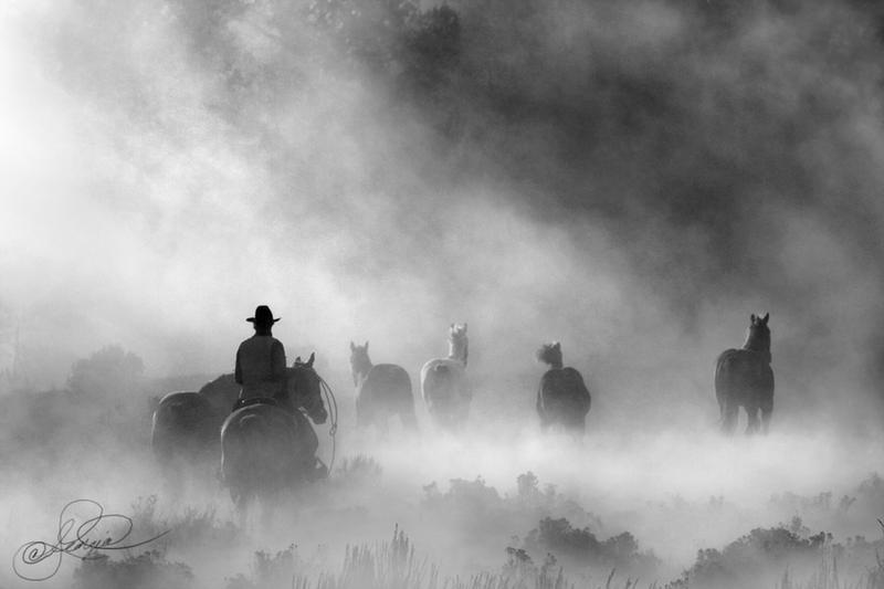 The Gathering by photocrafter