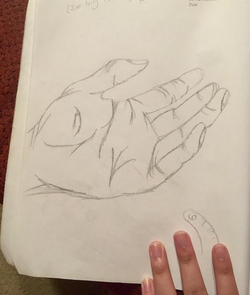 Hand by KittenFace101