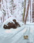 Walking in the snowy forest
