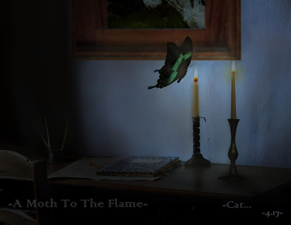A Moth To The Flame by Can-Cat