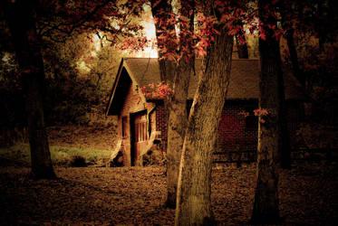 In The Woods II by sevymama