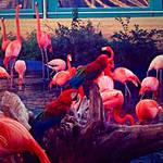 Birds by xXXxNightShadexXXx