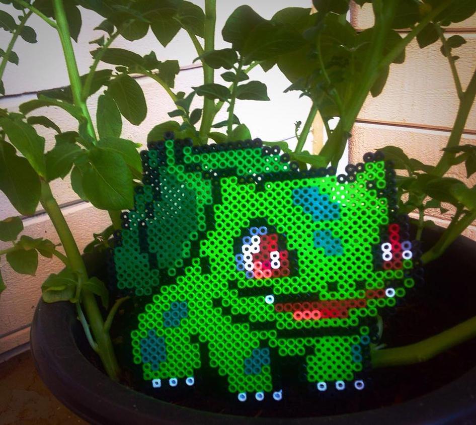 A Wild Pokemon Appears! Bulbasaur Perler by xXXxNightShadexXXx
