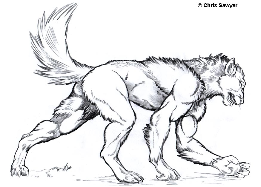 Werewolf TF by ChrisSawyerArt