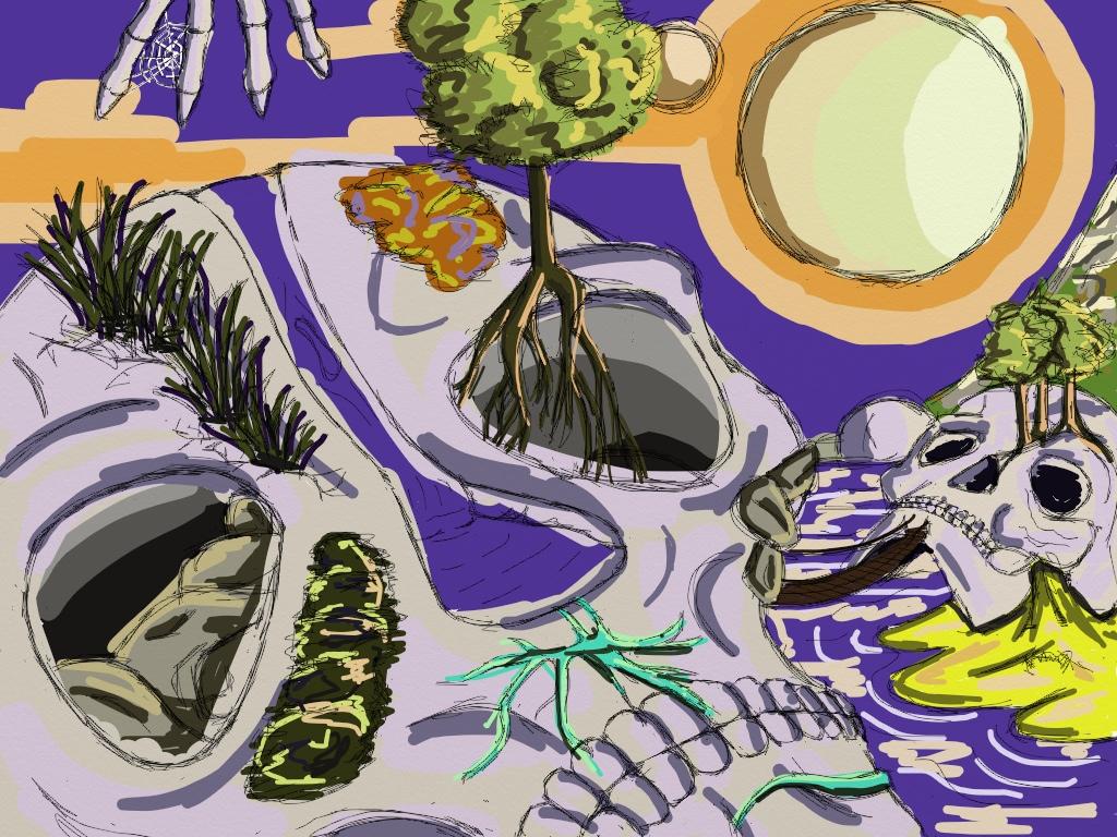 Skull Isles colour WIP by HarlandGirl