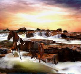Whitewater Splashes