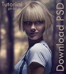 Tutorial + PSD Download free