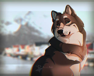 Alaskan Malamute by TimelordLoki