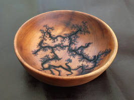 Lichtenberg etched wooden bowl