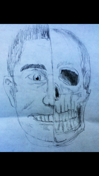 Face anatomy drawing (V2) by jallenq