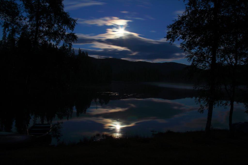 Raje at night by Riddande
