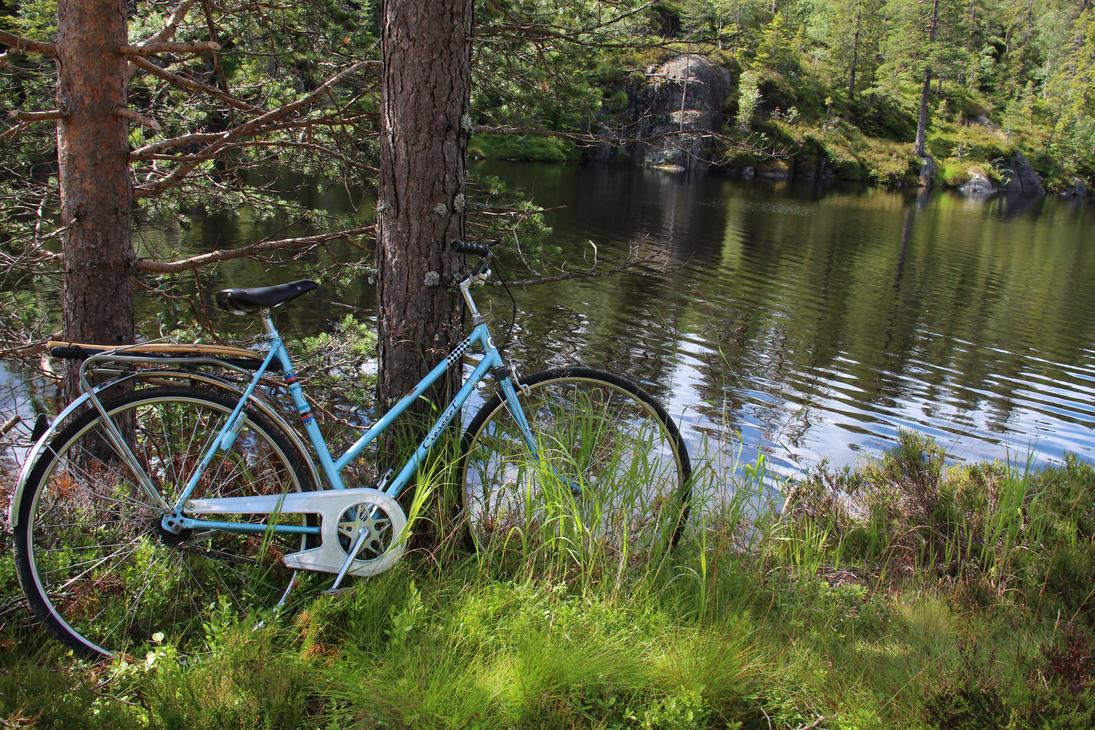Biking and fishing by Riddande