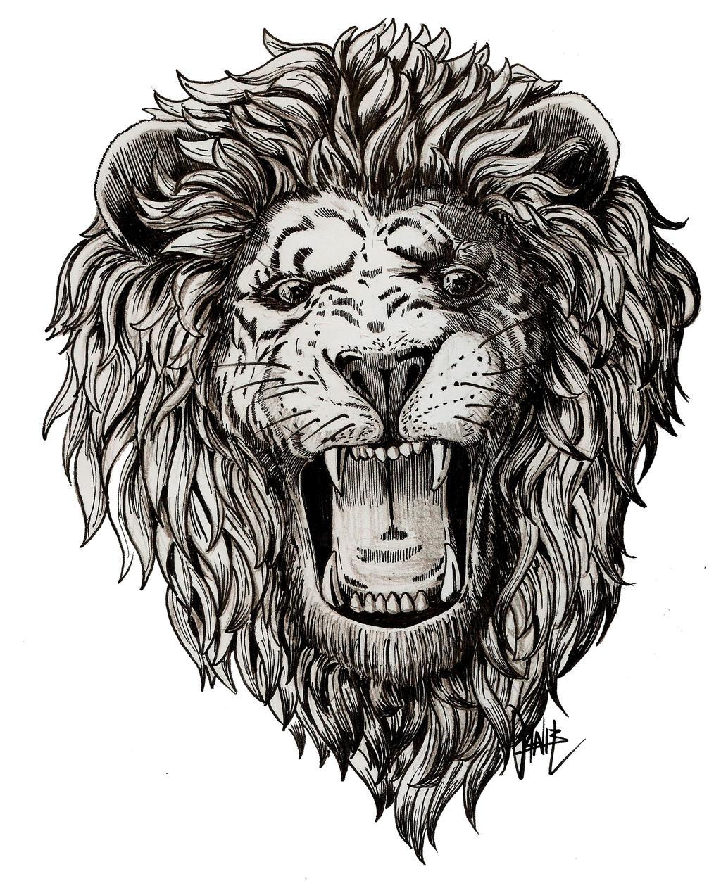 Lion roar by danillustration on DeviantArt