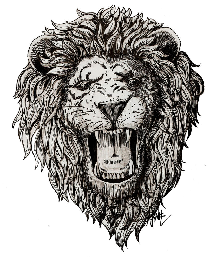 Lion roar by danillustration on DeviantArt